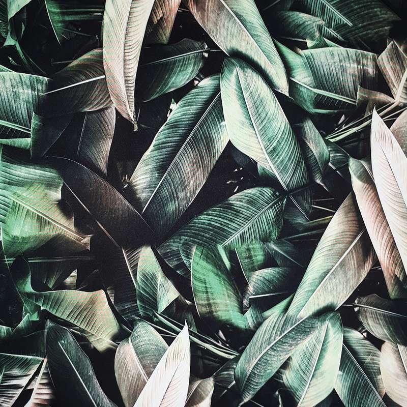 Chão de folhas